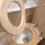  broken toilet seat