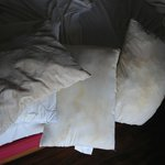  pillows with mold !!!!
