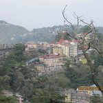 shimla from room