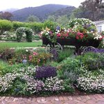 San Ysidro Ranch on 4/14/13