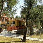 Photo of Camping Tigullio
