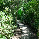  Pathway to Margarita y Eds cabanas