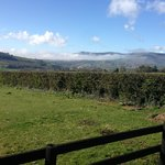 View from the front of hostel towards Mount Leinster
