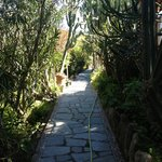 gorgeous garden walkways