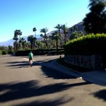 Biking through Palm Springs