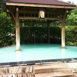 The Green Tea Pool