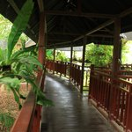 Foto van Khao Sok Riverside Cottages