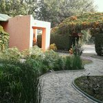  Hermoso jardn