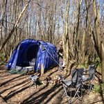 our tent in the woods