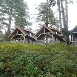Our cabin was fabulous and staff friendly but not intrusive