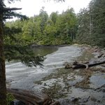  The beach and bay is one of the spots Ucluelet&#39;s most excellent aquarium collects and then relea