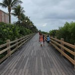  Old boardwalk, north view