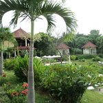  Individual bungalows