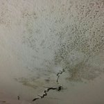 Our bathroom ceiling in the Glens Hotel