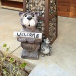  Adorable Welcome Bear