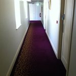  hallway with beautiful purple carpet