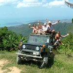 Island Safari Day Tours
