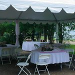  Wedding Dining in backyard tents