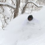 No need for groomers at Niseko
