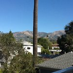  View from the Alice Room towards the mountains - big palm tree in the middle
