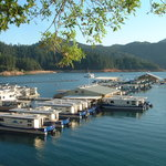 View of the Marina and Houseboat Rentals