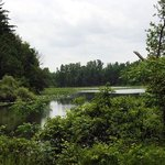 Waterford North Conservation Area