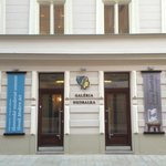 Nedbalka Gallery
