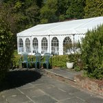 Marquee in rear garden