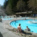 Sol Duc Hot Springs Resort resmi