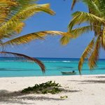  Spiaggia Saona 3