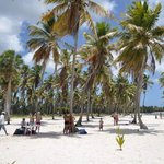  Spiaggia Saona 2