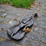  A violin