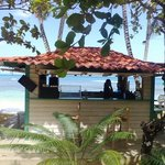  Bar Las Terrenas