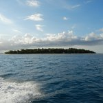  Navini Island from a distance.