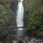 Waterfall at Cranny Falls