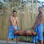  Paradise of yea and the Pig was good too.. lol