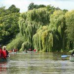 Guided Canoe Trip near Ross on Wye