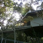  Photo of a Hidden Canopy treehouse.