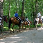 Horeseback Riding at Nantahala Village