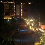 magical garden lights