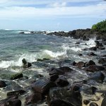  Waves crashing near the Honu