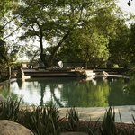 Singita Boulders Lodge Main Pool Area