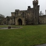  Johnstown Castle in the rain