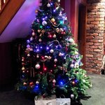 Staple Oak Suite Christmas Tree