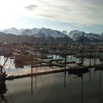  Seward Harbor. View from our window.