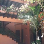 Beautiful plants surround the interior courtyard of the hotel