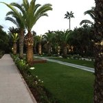  Sofitel Jardin de Roses garden