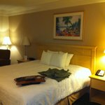 Hampton Inn Ft. Lauderdale Plantation照片
