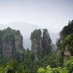 Wulong Forest Park