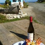  crayfish with a view